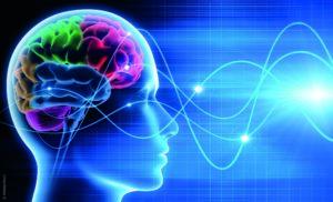Neurosciences et avenir de l'homme. Un chemin d'espérance