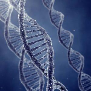 Révision des lois de bioéthique : « Améliorer la vie ? »